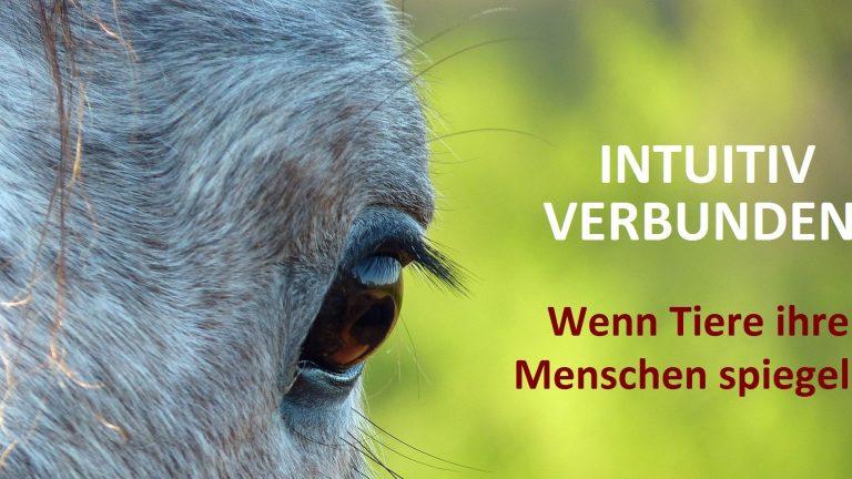 Online-Live-Vortrag: Wenn Tiere ihre Menschen spiegeln